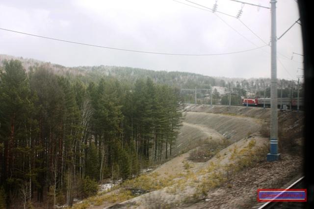 Тайга у самой насыпи железной дороги