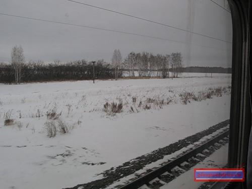 вид из окна поезда «РОССИЯ» на барабинские степи